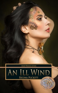 An Ill Wind book cover