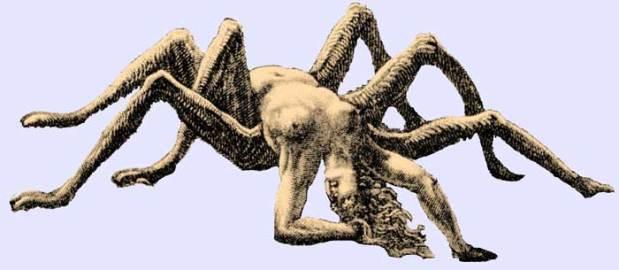 ArachneDore